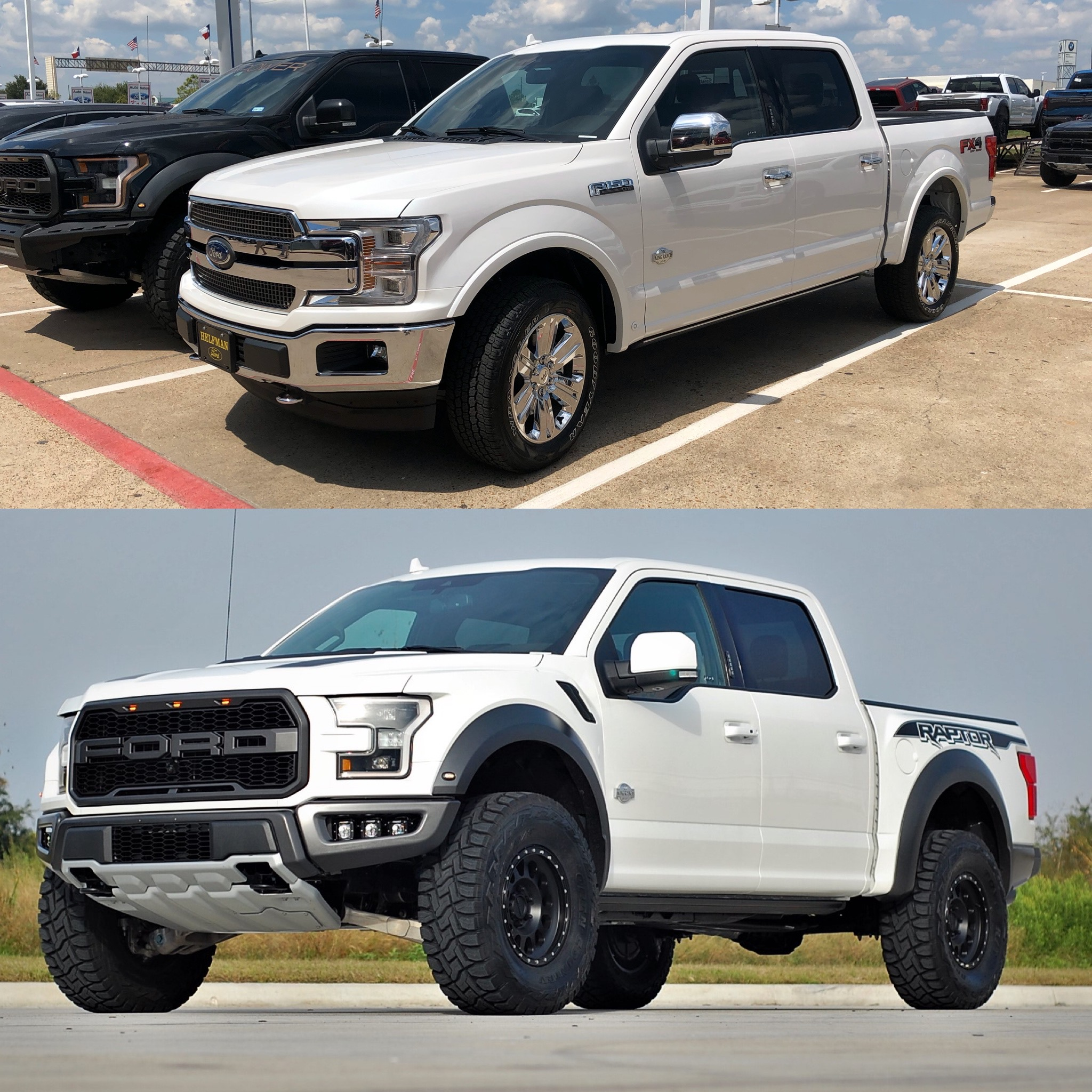 king ranch raptor